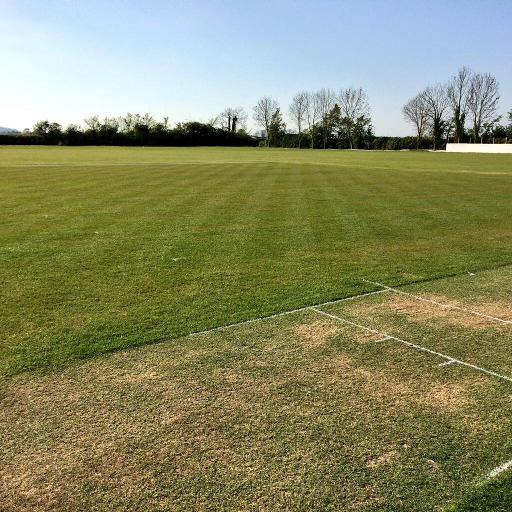 Wembdon Cricket Club