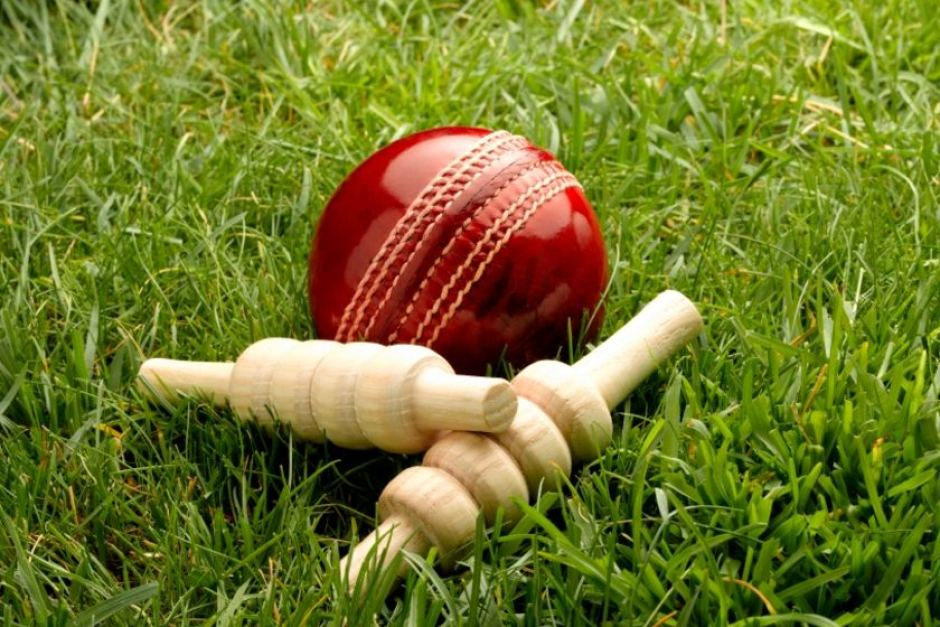 Cricket ball & bails